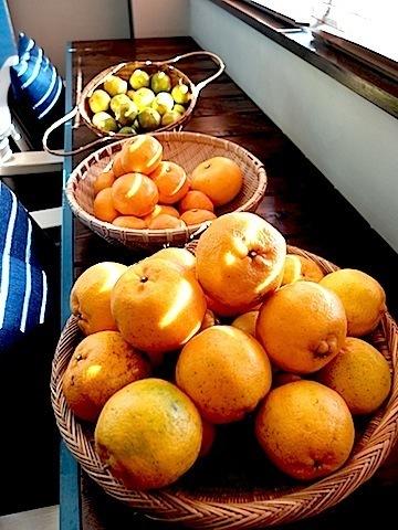 20151219柑橘まつり.JPG